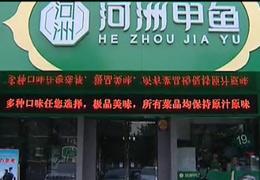 河州甲鱼简介视频