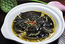 河洲红烧甲鱼