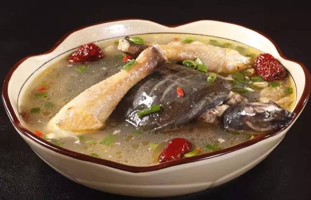 什么是甲鱼的食性特点?看完你就知道了!