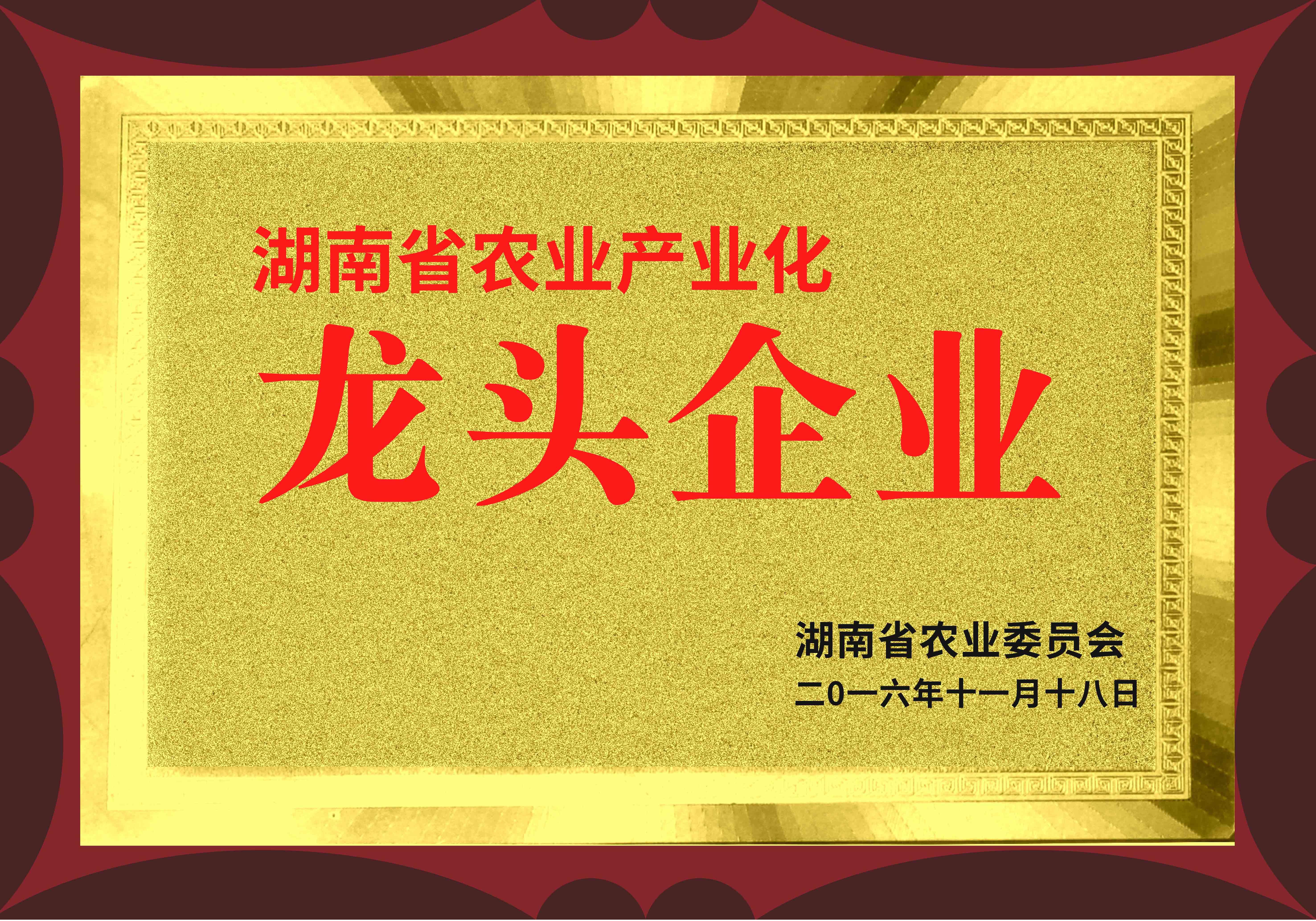 【湖南省农业产业化龙头企业】